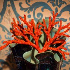 coralli vetro di murano marisa convento